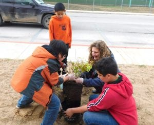Pleasanton Junior High Life Skills students took part in a planting project at the Atascosa McMullen Co-op. MICHELLE GONZALES | COURTESY PHOTOS