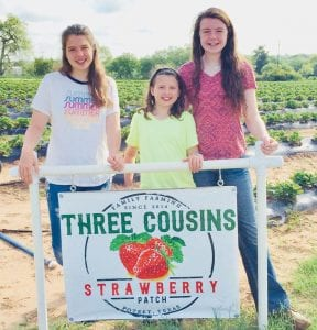 Hannah Chandler, Tess Chandler and Hallie Bates, Three Cousins Strawberry Patch, 830-480-2060 CONTRIBUTED