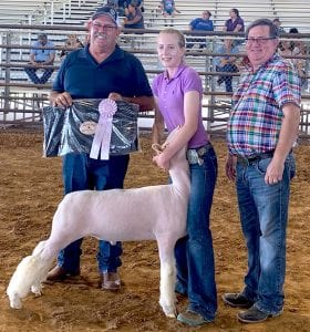 Reserve Champion Sheep exhibitor Emmy Ferris of Boerne, exhibiting her Fine Wool Cross Sheep. Also in Picture is Jay Korus Atascosa County Fair President and judge Chad Coburn of Sterling City. COURTESY PHOTO