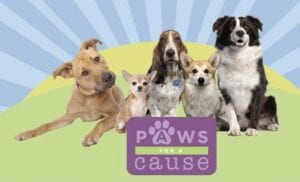 The public is invited to bring their furry friends to Paws for a Cause!