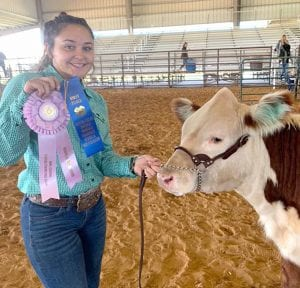 Natalie Michalec received Reserve Grand Champion for her Hereford heifer. COURTESY PHOTO