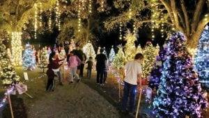 If you haven't already, be sure to take a stroll through the River Park Wonderland at Pleasanton River Park before January 3, 2020. NOEL WILKERSON HOLMES   PLEASANTON EXPRESS