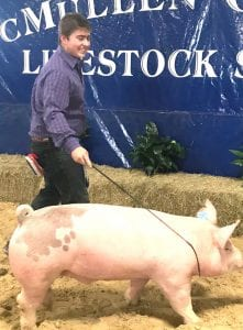 Cotton Harris showing his hog at the McMullen County Livestock Show. NOEL WILKERSON HOLMES | PLEASANTON EXPRESS