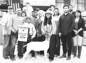 GRAND CHAMPION GOAT From Mesquite 4-H, Larissa Villarreal won Grand Champion Goat with her Class 3 Market goat. Buying were, from left: John Olle (Statewide Claims Services), Leroy Villarreal (dad, L&R Villarreal Welding Services), Shirley Wiley (Wiley Lease Co.), Will Krause, Justin Villarreal with banner (brother), CJ Rodriguez (Silver Eagle Distributors), Josh Powell (Primo's Feed & Supply), Aubrey Smith (H-E-B), Larissa Villarreal (GC Goat), Tim Swan (Mac Haik Southway Ford), Sylvia Villarreal (mom), Zachary Price (Lightning Fast Car Wash), Ralph Goode (Glazers Beer & Beverage) and Michelle Ramos (Ramos Tires). MEMORIES ON MAIN | COURTESY PHOTO