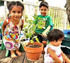 These Gonzales kids love gardening and composting with their daddy. Samuel, Nola, and Josie with their bell pepper plant. Domingo and Samantha are the proud parents and they happily live in Poteet. COURTESY PHOTO