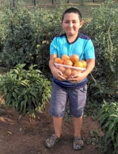 AJ, grandson of Ray and Isabelle Rodriguez, owners of El Castillo in Pleasanton, loves helping his grandfather in the garden. COURTESY PHOTO