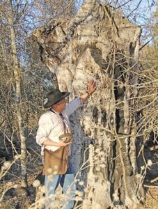 Ricky D. Reyes was drawn to this oak tree on Jan. 15, the focal point of the grove. He believes this spot might be the burial site of his stillborn aunt as oak trees were often signified as burial sites back then. REBECCA PESQUEDA | PLEASANTON EXPRESS