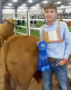 Ely Rankin, Mesquite 4-H, won first place with his Santa Gertrudis at the San Antonio Stock Show. COURTESY PHOTO