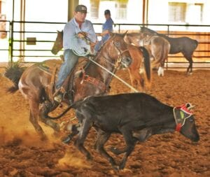 Mason Moore ropes the head of a steer to turn it so his brother Logan can rope its heels. SAM FOWLER | PLEASANTON EXPRESS