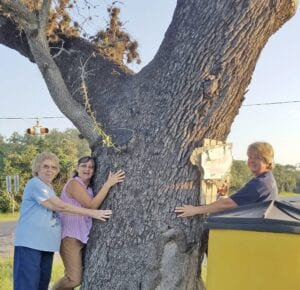 """TREE HUGGERS: Mary Bell, Katie Boggs and Bonita Green show """"Big Ross"""" some love Tuesday morning. Ruth Ann Olivares, a photography teacher at Poteet ISD and Cleo Vargas' niece was the photographer who documented the Save Big Ross event. Thirteen other citizens joined in even though the word was out that """"Big Ross,"""" for now, was saved. But, evidence of its historical significance will be a factor in its future so its history is needed. RUTH ANN OLIVARES 