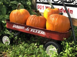 Pumpkins for sale and much more at the Maker's Market this Saturday. DARLA ROYAL| COURTESY PHOTO